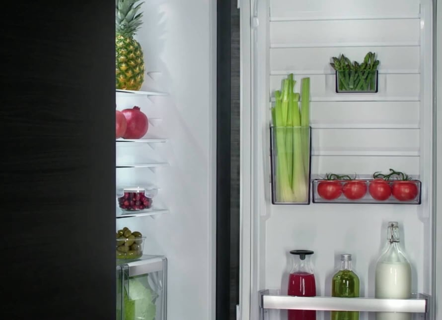 Open Fridge Freezer
